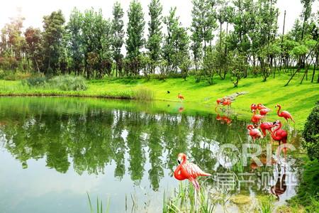 子湖图片相册 熊猫大道 成都房价点评网高清图片